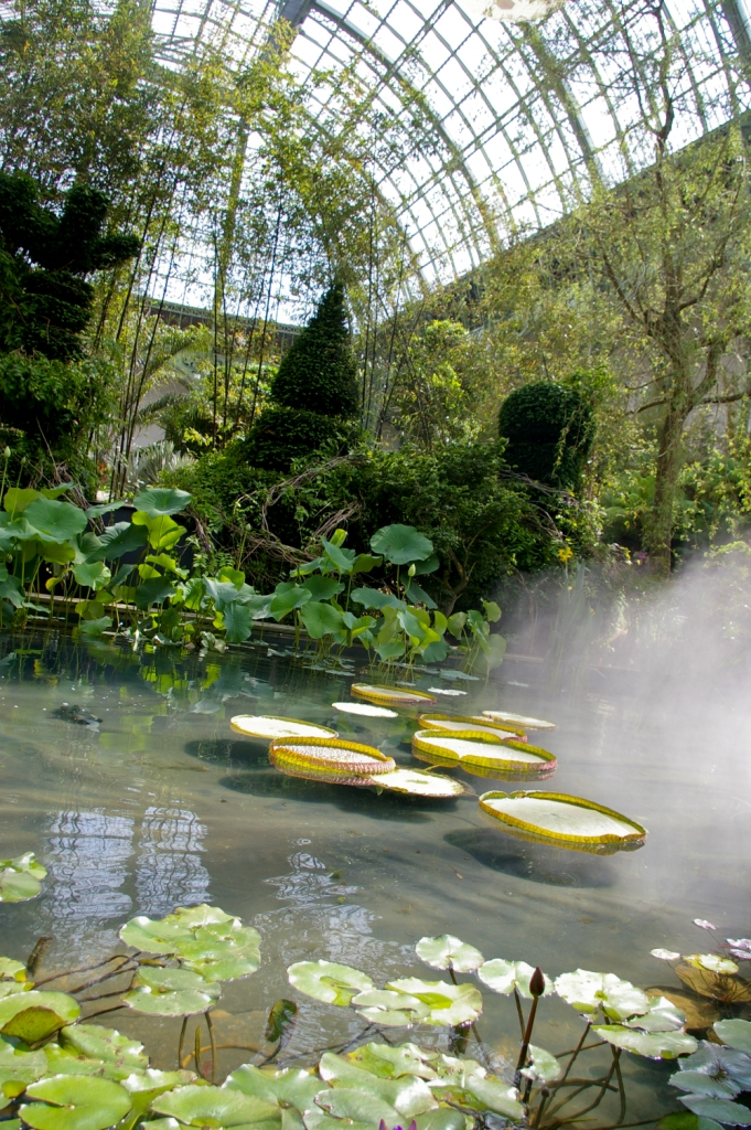 L art du jardin au grand palais l exposition v g tale for Expo jardin paris
