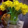 Offrez des fleurs pour financer la recherche sur le cancer