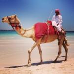 10 choses à faire à Dubaï