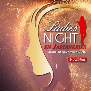 Les ateliers DIY de Noël avec la Ladies Night Truffaut