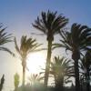 10 choses à faire à Murcia / Murcie – Espagne